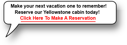 Yellowstone Cabin Rental Speach Bubble